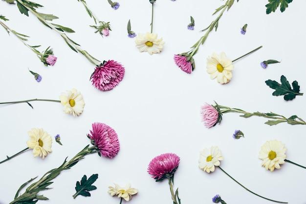 Flores amarelas, roxas e azuis sobre um fundo branco