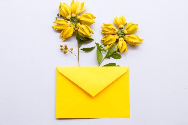 Flores amarelas ylang ylang com arranjo de envelope em estilo de cartão postal