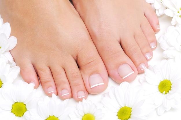 Flores ao redor de lindos pés femininos com pedicure francesa