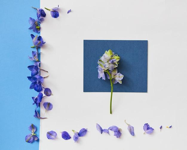 Flores azuis e quadro para vista superior do maquete de primavera em estilo plano leigo, com espaço vazio para o texto. cartão de felicitações
