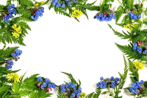 Flores azuis em um fundo branco.