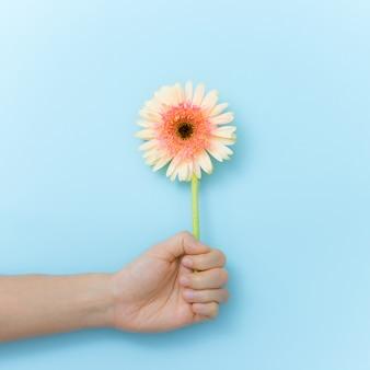 Flores bonitas ao presente à disposição sobre o fundo azul. tempo de primavera e inspiração