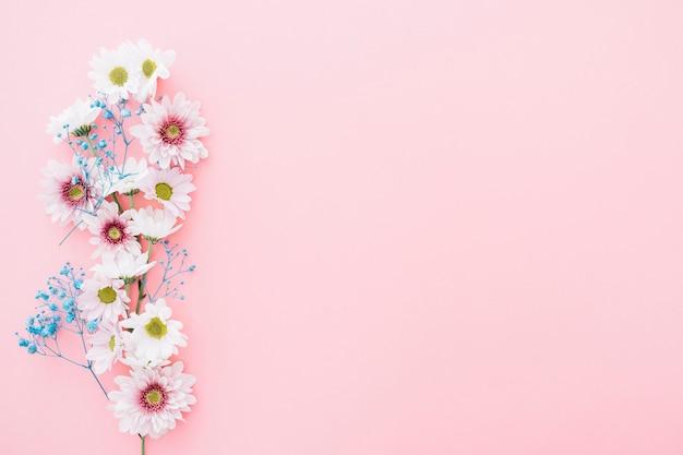 Flores bonitas em fundo rosa com espaço na direita