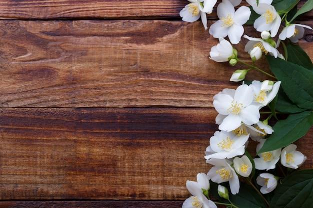 Flores brancas de jasmim