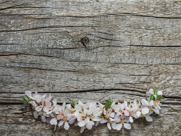 Flores brilhantes e um lugar para a inscrição. close, sem pessoas, textura. parabéns para família, parentes, amigos e colegas