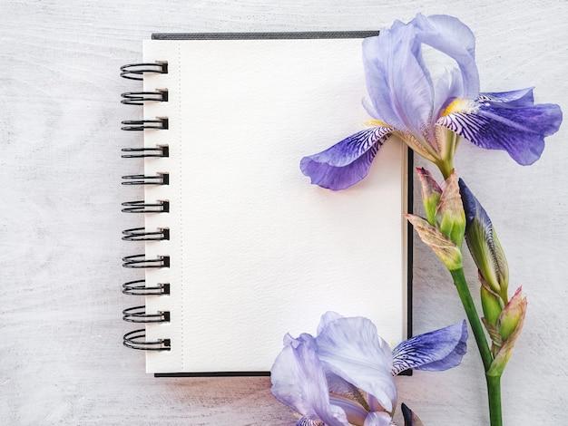 Flores brilhantes e um lugar para sua mensagem de felicitações. close, vista de cima. ninguém. conceito de preparação para férias. parabéns para parentes, amigos e colegas