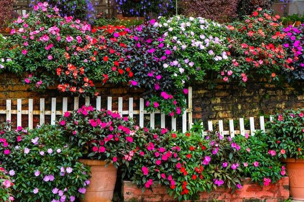 Flores brilhantes em uma decoração de loja de flores para casa e quintal.