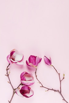 Flores coloridas decorativas
