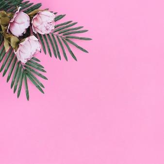 Flores com folhas de palmeira no fundo do quadro-de-rosa