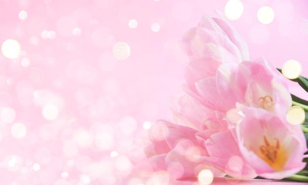 Flores com luzes de bokeh