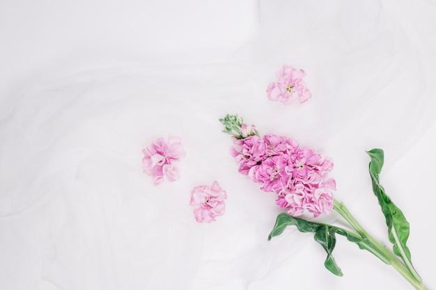 Flores com véu de noiva