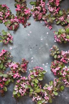Flores cor de rosa da árvore de fruta desabrochando na moldura da mesa vintage