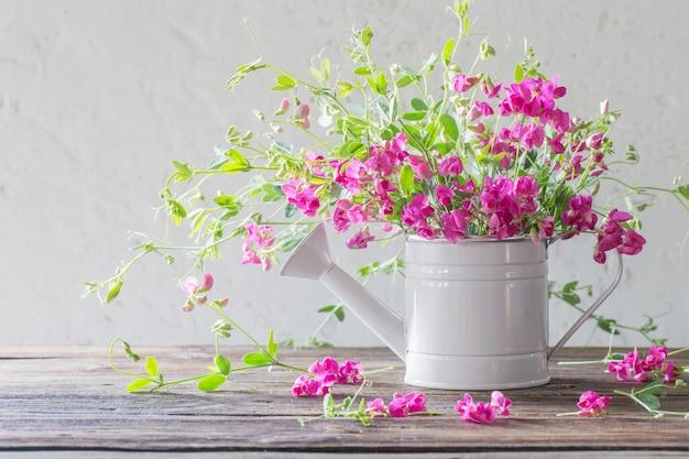 Flores cor de rosa de verão em regador na parede branca