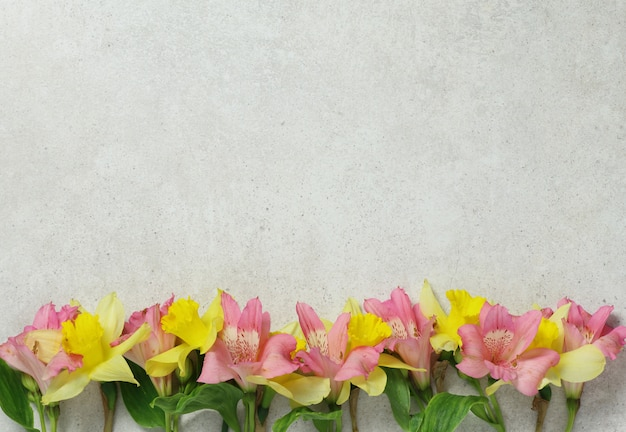 Flores cor de rosa e amarelas sobre fundo de pedra cinza
