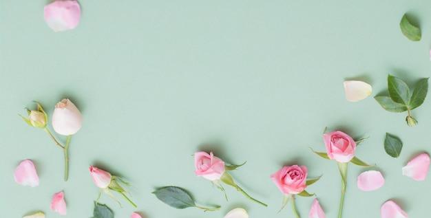 Flores cor de rosa e brancas em fundo de papel verde