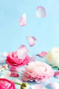 Flores cor de rosa e pétalas em um espaço de cópia de fundo azul claro,