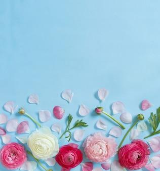 Flores cor de rosa em uma vista superior de fundo azul claro