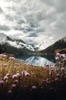 Flores cor de rosa perto de lago e montanhas sob céu nublado durante o dia