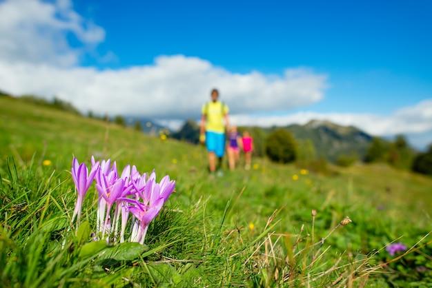 Flores da montanha com a família em uma caminhada