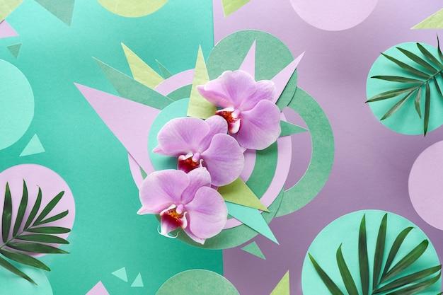 Flores da orquídea com cópia espaço, papel foral na cor rosa e menta