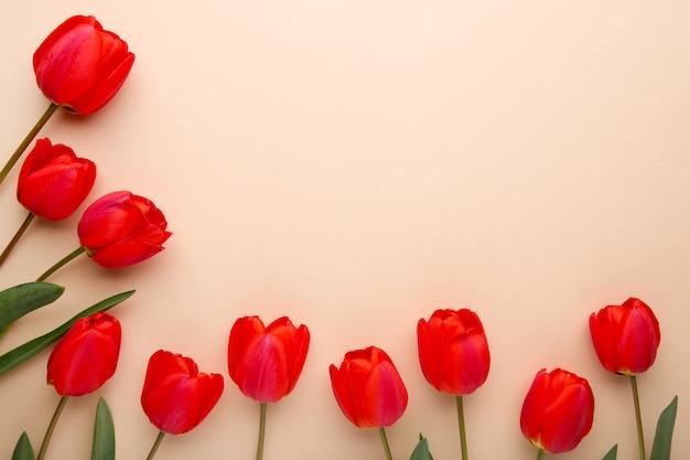 Flores da primavera. buquê de tulipas vermelhas em bege.