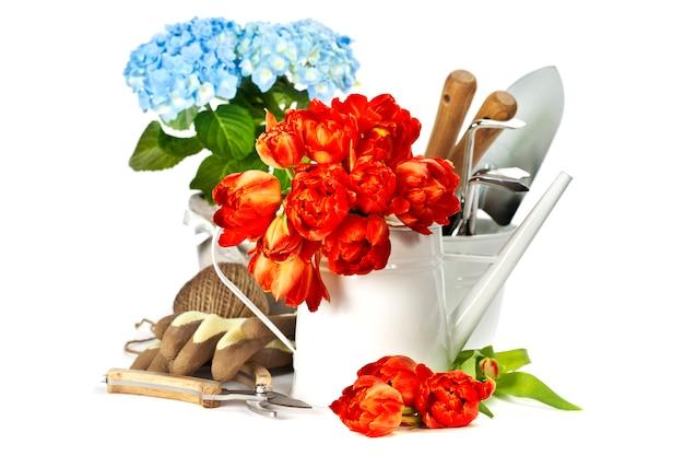 Flores da primavera e ferramentas de jardim