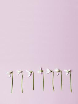 Flores da primavera em fundo com espaço de cópia. conceito minimalista