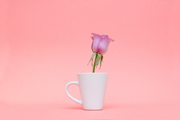 Flores da primavera em um fundo rosa