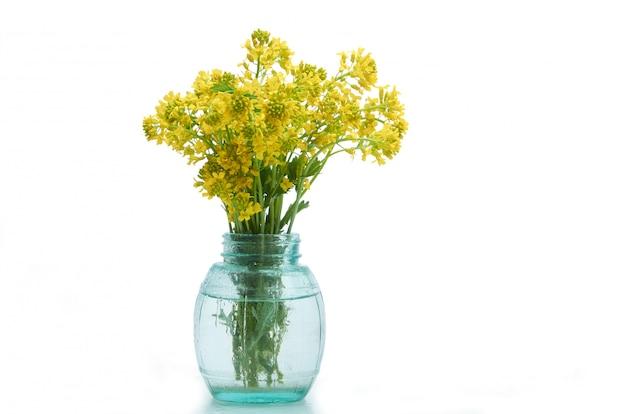 Flores da primavera em um vaso de vidro em branco isolado