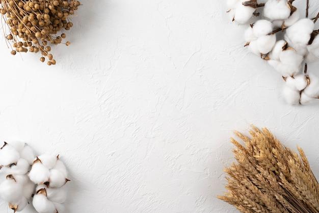 Flores de algodão e espigas de trigo maduras em um fundo branco. postura plana, copie o espaço para o texto. vista do topo