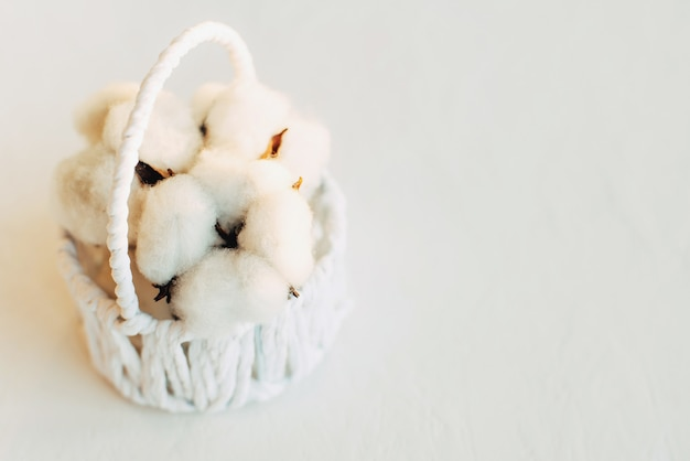 Flores de algodão em uma cesta em uma parede branca
