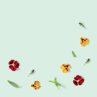 Flores de amor-perfeito amarelas e vermelhas, pequenas folhas verdes, estilo sazonal de flores planas de verão