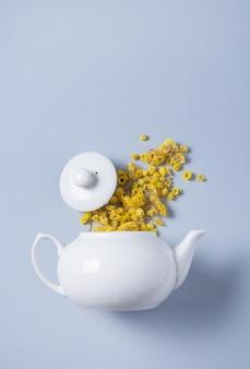 Flores de camomila derramadas de um bule de chá branco sobre um fundo azul