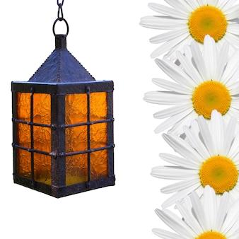 Flores de camomila e luzes. o conceito de luz