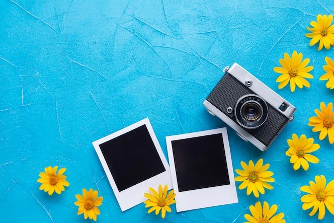 Flores de cardo de ostra espanhol e câmera polaroid