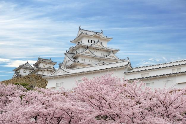 Flores de cerejeira e castelo de himeji em himeji, hyogo, japão