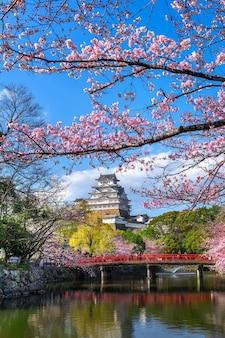 Flores de cerejeira e castelo em himeji, japão