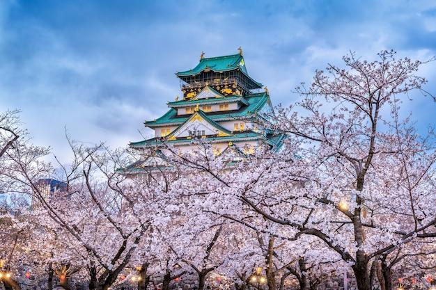 Flores de cerejeira e castelo em osaka, japão.