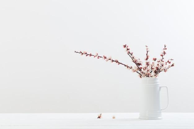 Flores de cerejeira em um vaso em fundo branco