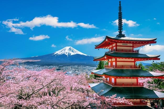 Flores de cerejeira na primavera, pagode chureito e montanha fuji no japão.