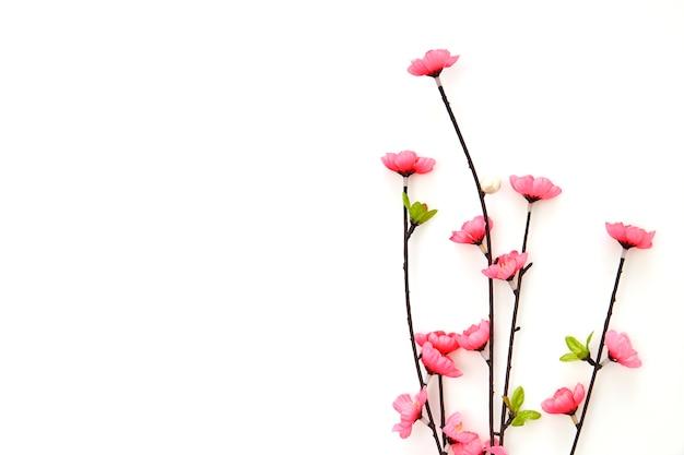 Flores de cerejeira rosa ramo