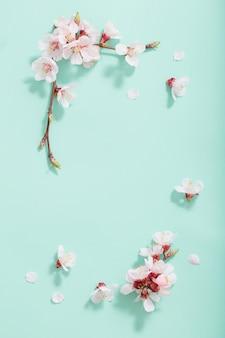 Flores de cerejeira rosa sobre fundo verde