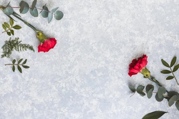 Flores de cravo vermelho com ramos de plantas