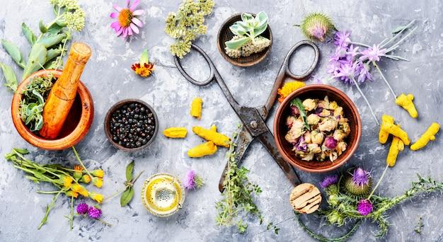 Flores de ervas medicinais