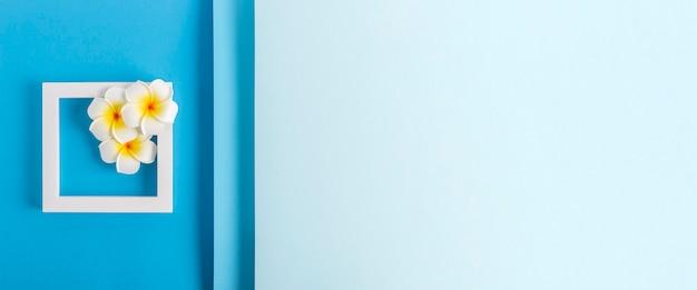 Flores de frangipani em um pódio quadrado sobre um fundo azul dobrado. vista superior, configuração plana. bandeira.
