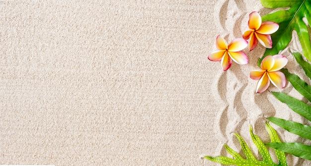 Flores de frangipani (plumeria) e folhas tropicais verdes na areia, fundo tropical, espaço de cópia