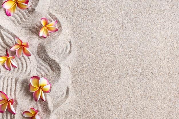 Flores de frangipani (plumeria) na areia, fundo tropical, espaço de cópia