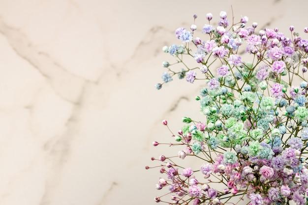 Flores de gipsophila coloridas arco-íris em fundo de mármore com espaço de cópia. arranjo de flores.