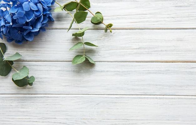 Flores de hortênsia azul