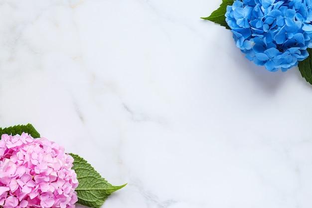 Flores de hortênsia em uma mesa de mármore branco com espaço de cópia fundo floral em branco para design